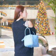 Hermès(爱马仕)lindy 北方蓝 swift 编织肩带 银扣 26cm
